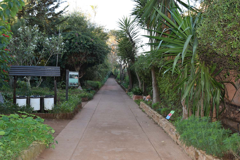 Les Jardins Exotiques De Bouknadel Tourisme A Rabat Sale Kenitra